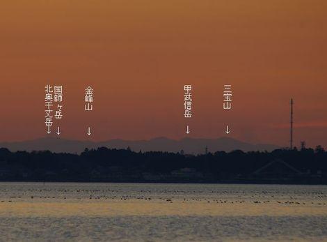 090104hirakawa3_2